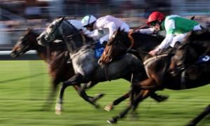 Horse-Racing---Autumn-Con-001